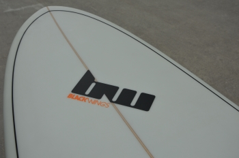 BlackWings 9'1 LONGBOARD ALROUND cristal clear